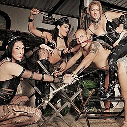 Hardcore tranny domination sex action.