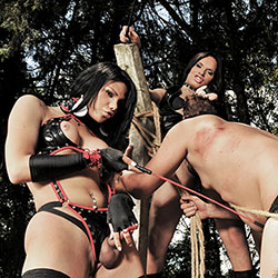 Three ts dommes punish a guy outdoors.
